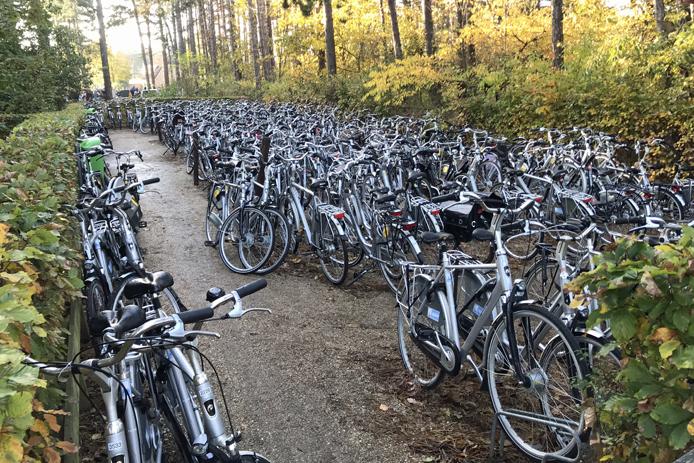 Veel fietsen