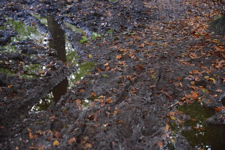Parcours Bosmarathon Soest