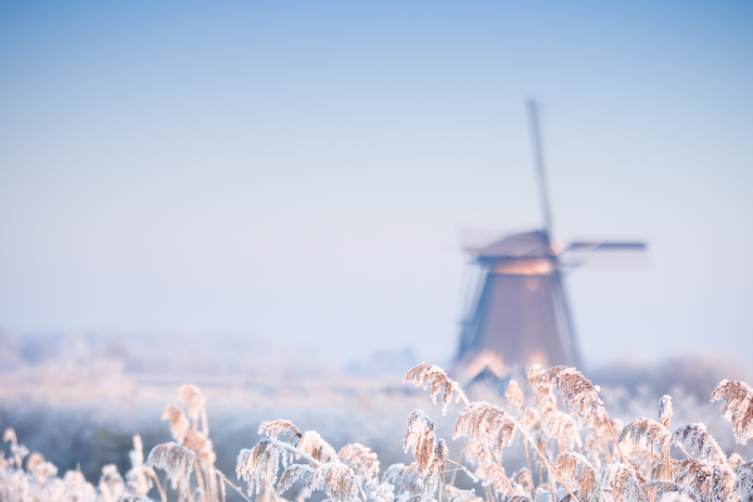 Winter in Kinderdijk